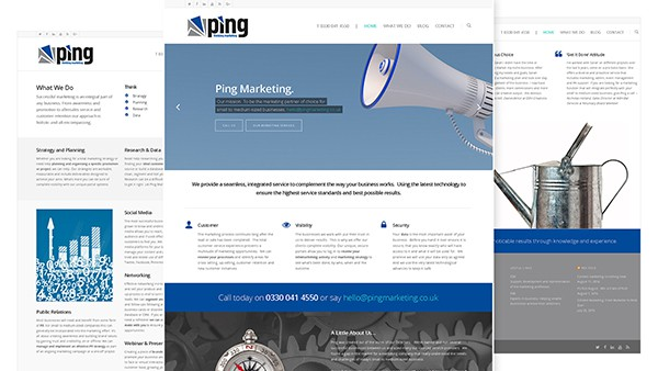 Ping Marketing Logo and Web Design